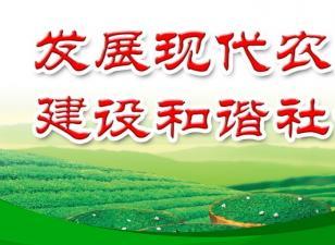 山东省人民政府关于加快构建农村现代经营服务新体系全面推进供销合作社改革发展的意见